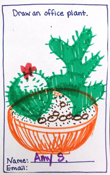 Cactus in orange bowl, Municipal Restored, 2018