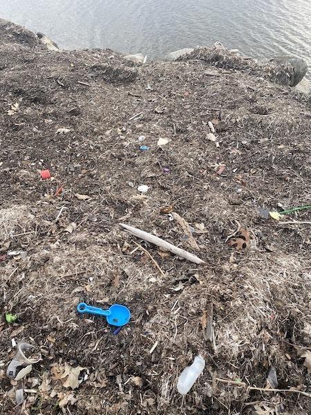 Garbage on lakeshore, Madison, 2020